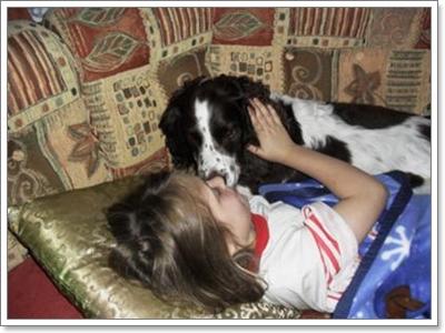 Dogilike.com :: 10 สายพันธุ์ น้องหมาติดหนึบชีวิตนี้ขาดเจ้าของไม่ได้!!!