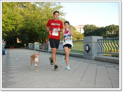 Dogilike.com :: มาเช็กกัน! คุณคือผู้เลี้ยงแบบไหน? ที่ได้ใจน้องหมา