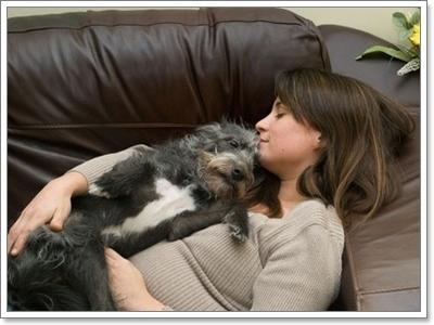 Dogilike.com :: เช็ก! 10 พฤติกรรมน้องหมาที่บอกว่าผูกพันกับเจ้าของมากสุดๆ
