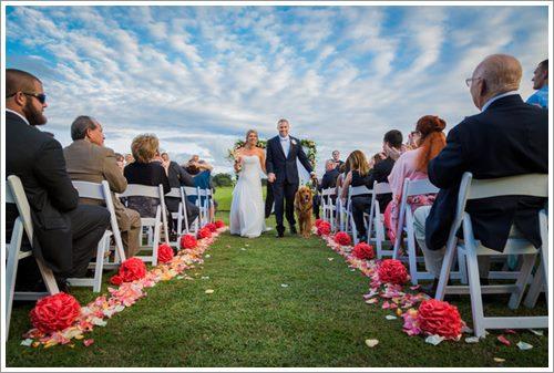 Dogilike.com :: สุดปลื้ม! คู่รักมะกันจูงโกลเด้นฯ สุดรักเดินเคียงข้างร่วมพิธีแต่งงาน