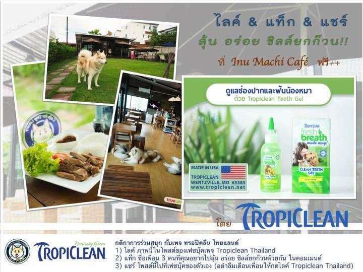Dogilike.com :: Tropiclean ชวนร่วมสนุก กินฟรียกแก๊งค์ @Inu Machi Cafe