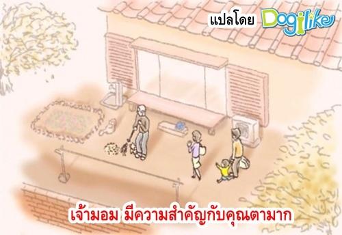 Dogilike.com :: ภาพวาดซึ้ง! เมื่อ เจ้ามอม จากร้านขายสัตว์เลี้ยงได้เจอกับคุณตาผู้เปลี่ยนชีวิต
