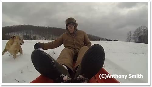 Dogilike.com :: จับตาดูเจ้าตูบ เมื่อมันได้เห็นคุณปู่วัย 90 ปี เล่นเลื่อนหิมะเพียงลำพัง