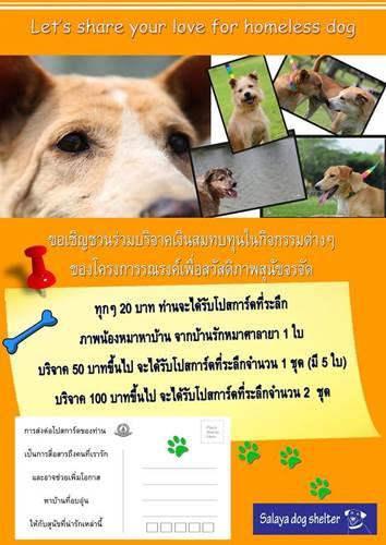 Dogilike.com :: อุดหนุนโปสการ์ดช่วยสมทบทุนให้น้องหมาจากบ้านรักหมาศาลายา