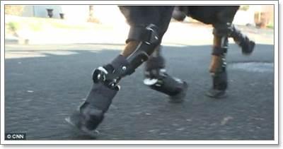 Dogilike.com :: สุนัขพิการ 4 ขาผู้ไม่ยอมแพ้กับการวิ่งบนขาเทียมเป็นครั้งแรก!