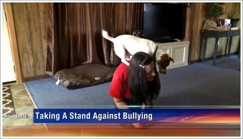 Dogilike.com :: ชาวเน็ตชื่นชม! เด็กสาววัย 17 ปี สอนสุนัขทำตามคำสั่งได้กว่า 200 ทักษะ