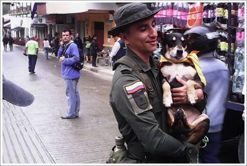 Dogilike.com :: สุดระทึก! นาทีช่วยชีวิตสุนัขจากเหตุน้ำป่า ดินถล่ม ในโคลอมเบีย (มีคลิป)