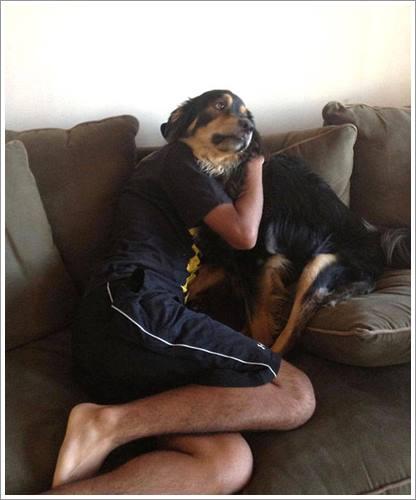 Dogilike.com :: 21 ภาพสุดฮาของน้องหมากับจังหวะโดน ๆ ที่ทำให้คุณต้องขำกลิ้ง