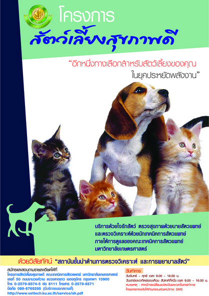 Dogilike.com :: ตรวจสุขภาพกับโครงการสัตว์เลี้ยงสุขภาพดี@ม.เกษตรศาสตร์ บางเขน
