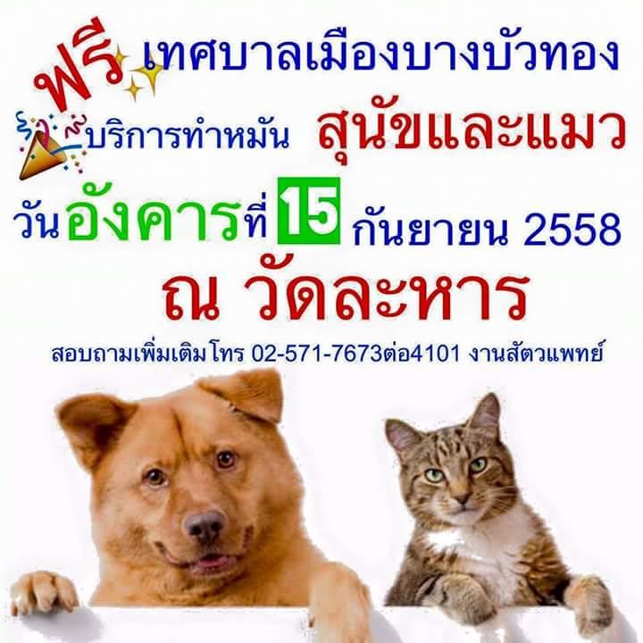 Dogilike.com :: เชิญผู้สนใจพาสุนัขและแมวทำหมันฟรี ! @วัดละหาร จ.นนทบุรี