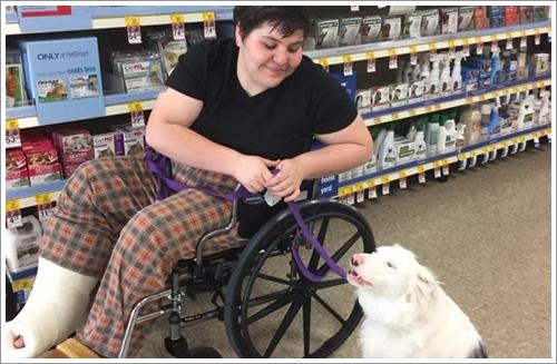 Dogilike.com :: สุดยอด! หญิงมะกันใช้ภาษามือฝึกตูบหูหนวก หวังปั้นเป็นสุนัขช่วยเหลือ