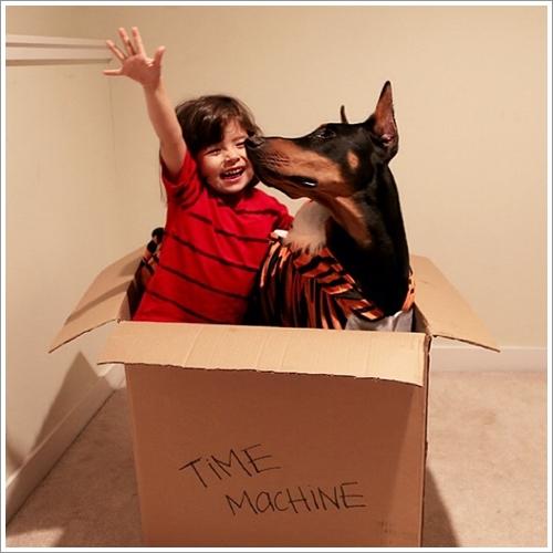Dogilike.com :: 21 ภาพความผูกพันของสาวน้อยกับโดเบอร์แมนเพื่อนซี้ !
