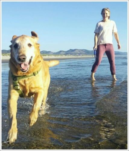 Dogilike.com :: สุดซึ้ง! เจ้าของจัดงานแต่งริมทะเล พร้อมอำลาสุนัขป่วยมะเร็งกระดูกเป็นครั้งสุดท้าย