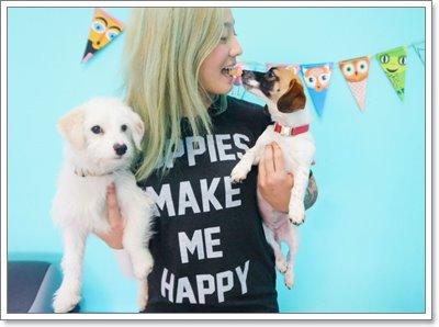 Dogilike.com :: รวมมิตรคาเฟ่หมาสุดฮิตจากทั่วโลก