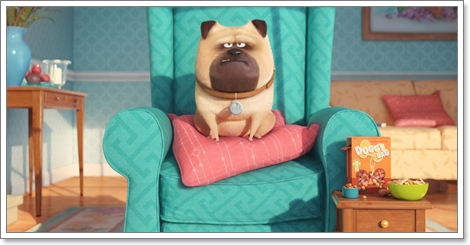 Dogilike.com :: ดูแล้วอยากเล่า! ไขทุกความลับของแก๊งขนฟูใน The Secret Life of Pets