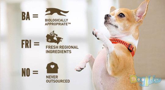Orijen, БмцтЮ╗╧, мркрцйь╧я╒╥уХ╢у╥уХйь╢, мркрцйь╧я╒цр╖гяе╙╧пЮетх, ╒ИргБ╬╢Ю╩Г╧кар╣ягк╧жХ╖, мркрцйь╧я╒╥уХау╓граЮкарпйа╢Ир╧╙угюр╬, BIOLOGICALLY APPROPRIATE™, гя╣╤ь╢т╨й╢ЦкаХ, FRESH REGIONAL INGREDIENTS, ДаХ╗Ир╖╪ыИмвХ╧╪ет╣, NEVER OUTSOURCED, BA FRI NO, ╨цтия╥ Champion Petfood, ╩цпарЁЮ╧вИмйя╣гЛ80%, ╩цтарЁ╪я║╪еДаИйаь╧Д╬ц20%