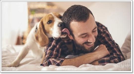 Dogilike.com :: รู้ไว้! น้องหมาชอบเลียหน้า ไม่ได้แปลว่ารักเราเสมอไป