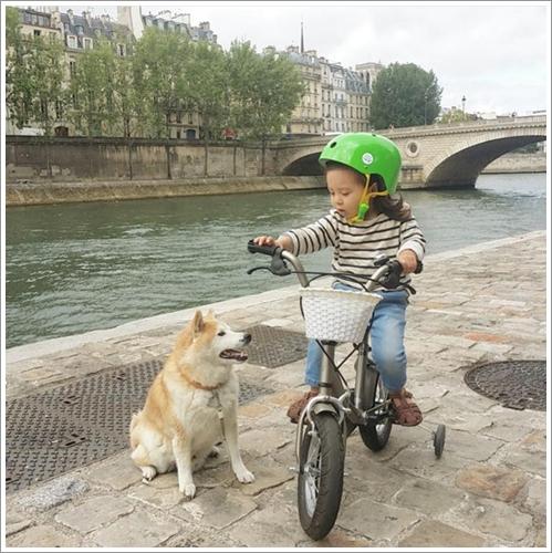 Dogilike.com :: 5 เทคนิคพาน้องหมาไปหาหมออย่างไรไม่ให้หวาดกลัว