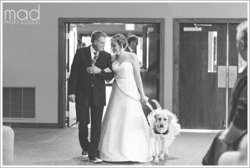 Dogilike.com :: ปลื้ม! สุนัขบำบัดปลอบเจ้าของ ลดความตื่นเต้นก่อนเข้าพิธีวิวาห์