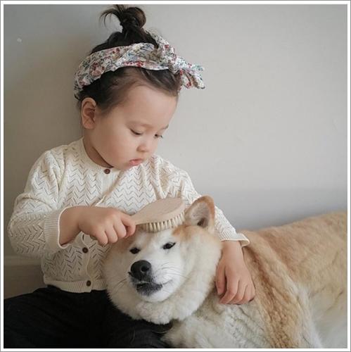 Dogilike.com :: ชาวเน็ตปลื้ม! ภาพถ่ายน่ารักของหนูน้อยที่มีเพื่อนซี้เป็นเจ้าชิบะ