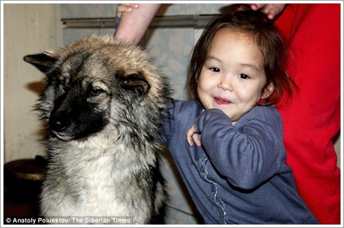 Dogilike.com :: สุนัขฮีโร! ดูแลหนูน้อย 4 ขวบหลงป่านาน 9 วัน ก่อนนำทางกู้ภัยช่วยชีวิต