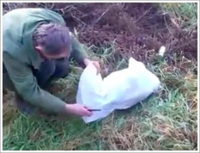 Dogilike.com :: สุดช็อก! พบสุนัขถูกมัดในถุงกระสอบโยนทิ้งข้างถนน