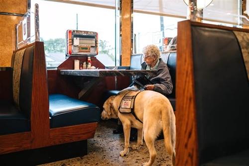 Dogilike.com :: เรื่องราวดี ๆ ของคุณยายทหารผ่านศึกวัย 92 ปี และสุนัขช่วยเหลือคู่ใจ