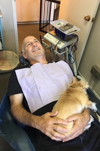 Dogilike.com :: อยู่ใกล้ก็อุ่นใจ! ตูบสูงวัยนอนตักคนไข้ ทำหน้าที่เป็นสุนัขบำบัดในห้องทันตกรรม