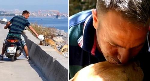 Dogilike.com :: เรื่องราวดี ๆ ของหนุ่มตุรกีที่ขี่มอเตอร์ไซค์ให้อาหารหมาแมวข้างถนนทุกวัน (มีคลิป)