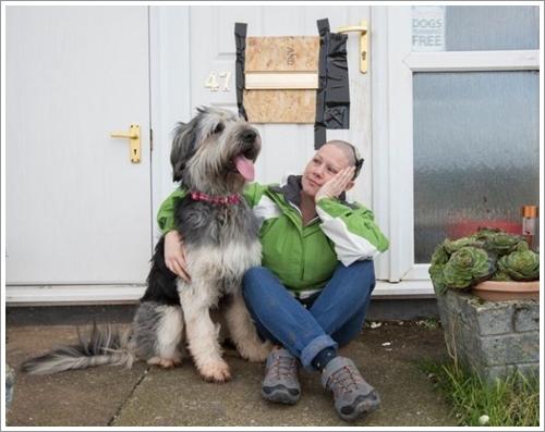 Dogilike.com :: แสบสุดๆ! เจ้าตูบนักทำลาย กัดช่องใส่ซองจดหมายจนหัวติดประตูบ้าน