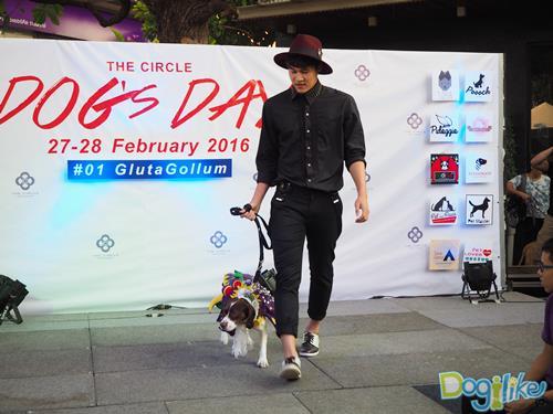 Dogilike.com :: Dogilike พารีวิว The Circle Dogs Day @เดอะเซอร์เคิล ราชพฤกษ์