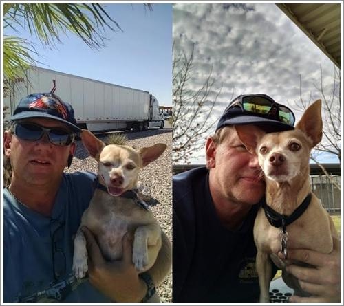 Dogilike.com :: หนุ่มมะกันควักเงิน 3 ล้านซื้อรถบรรทุกให้สุนัขแก่ที่รับเลี้ยงมาได้อาศัย