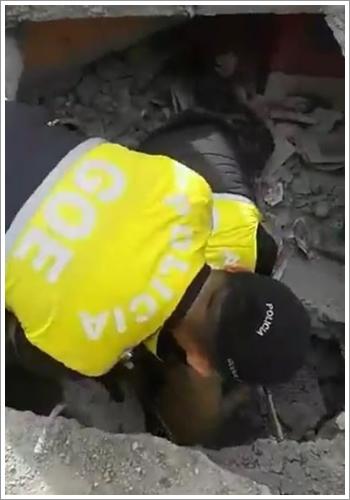Dogilike.com :: โชคดี! สุนัขตำรวจดมกลิ่นช่วยชีวิตเพื่อนตูบ หลังติดอยู่ใต้ซากแผ่นดินไหวที่เอกวาดอร์