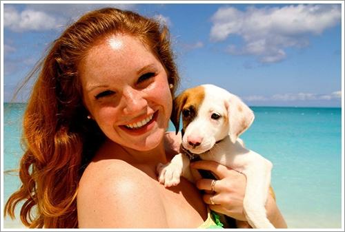 Dogilike.com :: หาดสวรรค์ของจริง! ฝูงสุนัขน่ารักบนหมู่เกาะคาริบเบียน นักท่องเที่ยวถูกใจรับเลี้ยงได้เลย
