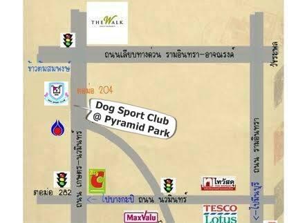 Dogilike.com :: Bearing เชิญคนรักสุนัขร่วมปาร์ตี้โฟม สงกรานต์น้องหมาที่แรกและที่เดียว !!