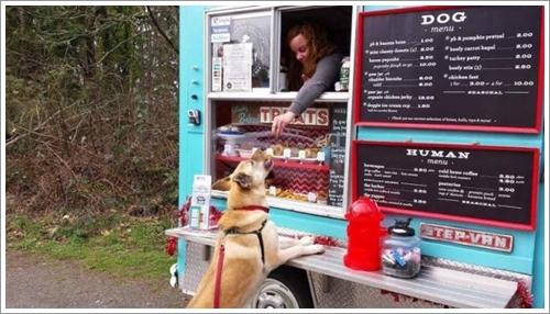 Dogilike.com :: เจ๋งสุด ๆ! มะกันผุดฟู้ดทรัคขายขนมสำหรับสุนัขเป็นเจ้าแรก