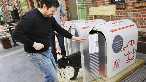 Dogilike.com :: ไฮเทคสุดๆ! นอร์เวย์ทำจุดรับฝากสุนัขหน้าซูเปอร์มาเก็ต เอาใจเจ้าของนักช้อป