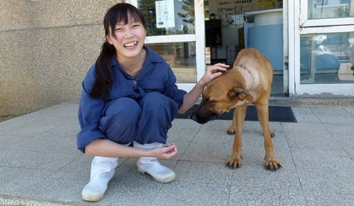 Dogilike.com :: สุดเศร้า! สัตวแพทย์ฆ่าตัวตาย หลังรู้สึกผิดที่ต้องการุณยฆาตสุนัข
