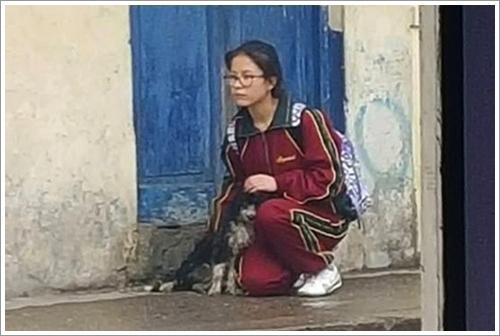 Dogilike.com :: สุดปลื้ม! ภาพนักเรียนเปรูนั่งเป็นเพื่อน ช่วยบังฝนให้สุนัขจรจัด