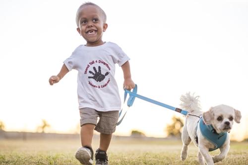 Dogilike.com :: เพราะเราเหมือนกัน! เมื่อชิสุแคระแกรนเปลี่ยนหนูน้อยให้เข้มแข็งขึ้น