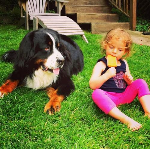 Dogilike.com :: น่ารักจับใจ!! 2 พี่เลี้ยงสี่ขาตัวโตกับหน้าที่ดูแล 2 หนูน้อย โด่งดังสุดๆในอินสตาแกรม
