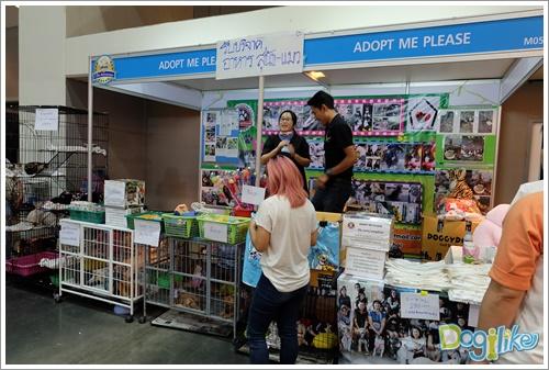 Dogilike.com ::  พาทัวร์งาน Thailand International Dog Show 2016  (Ep.2)
