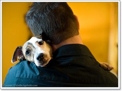 Dogilike.com :: ช่วงเวลาสุดน่ารัก ... เมื่อเจ้าตูบอยากอ้อนเจ้านาย
