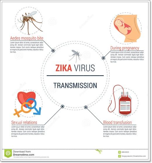 Dogilike.com :: ไข้ไวรัสซิกา (Zika virus disease) น้องหมาป่วยเป็น..ได้หรือไม่