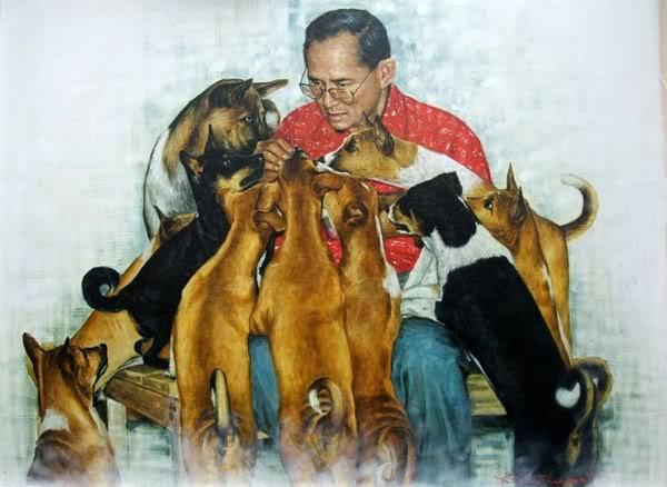 Dogilike.com :: สายธารพระเมตตาของในหลวง ร.9 ที่มียังสุนัขและสัตว์ป่วย
