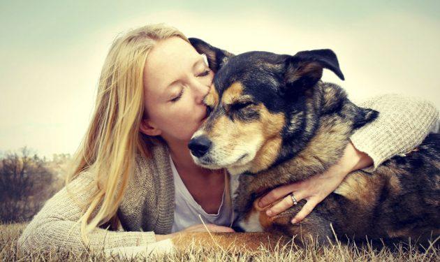 Dogilike.com :: 10 เรื่องที่ต้องบอกว่า คนอย่างนี้สิ ทาสหมา!! ชัดๆ