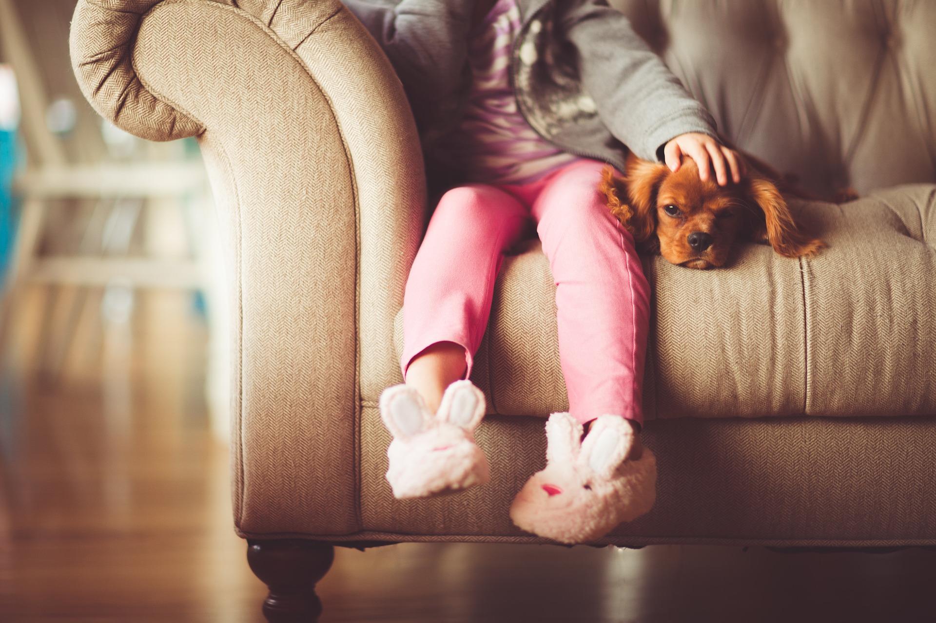 Dogilike.com :: 5 พฤติกรรมที่บอกว่าน้องหมาขาดคุณไม่ได้ (ต้องแก้ด่วน!!)
