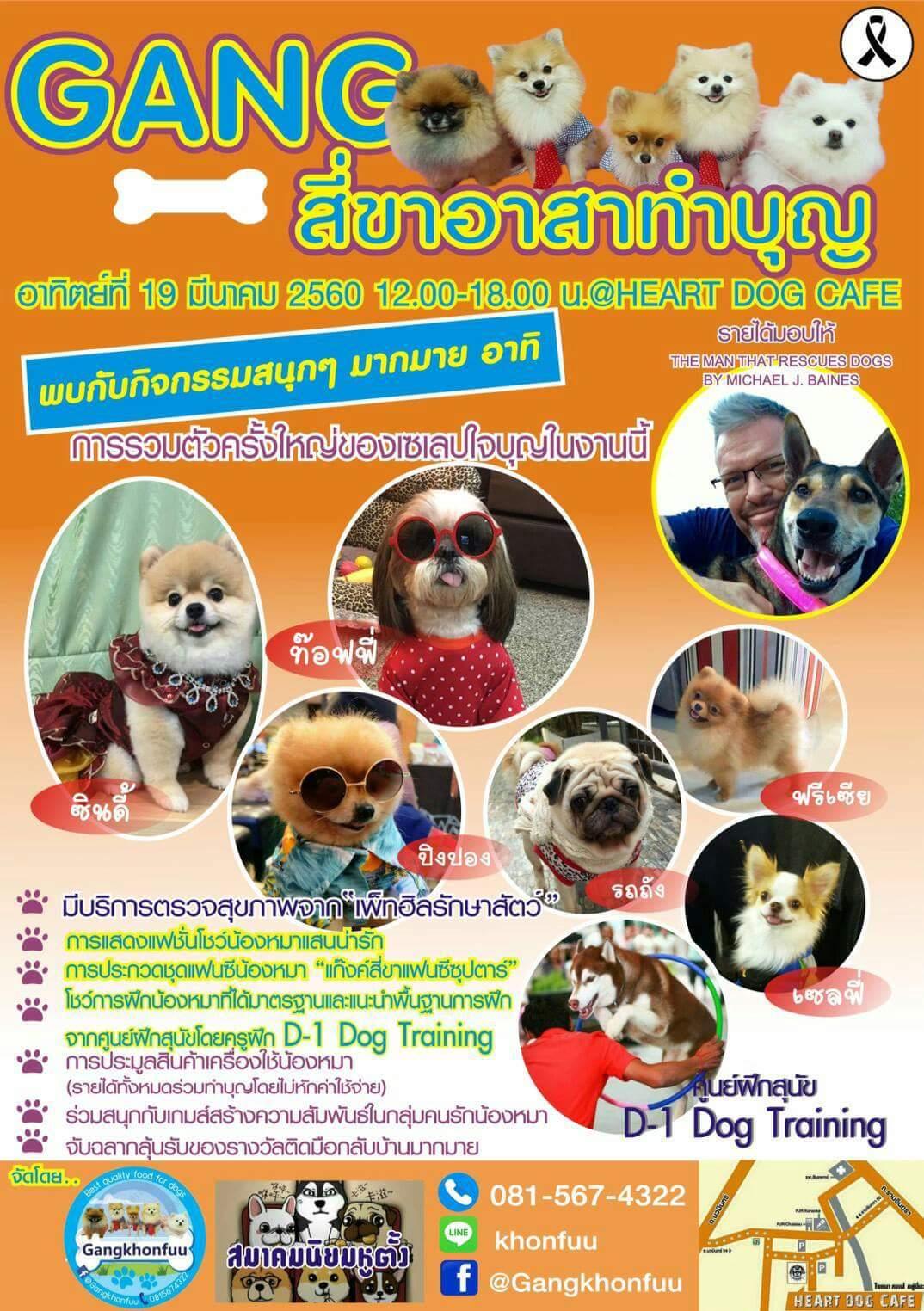 Dogilike.com :: ชวนคนรักหมาไปร่วมกิจกรรมน่ารัก Gang สี่ขาอาสาทำบุญ