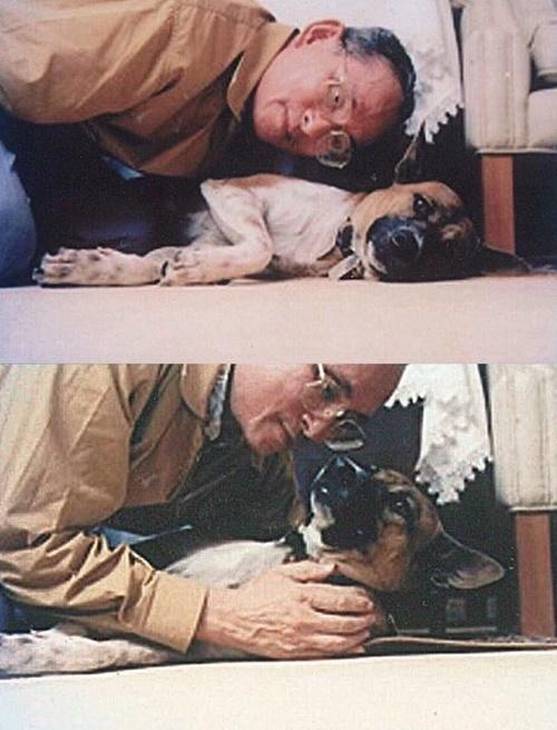 Dogilike.com :: 6 เรื่องราวความน่ารักและอารมณ์ขันระหว่างในหลวง ร. 9 และคุณทองแดง