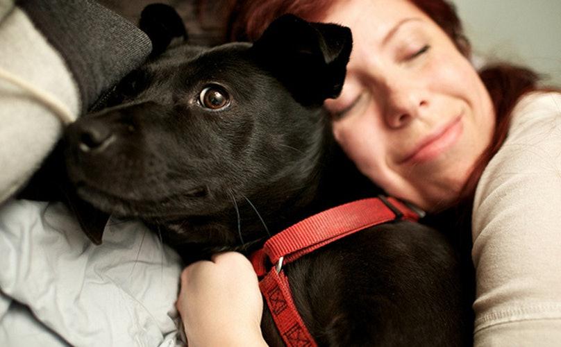 Dogilike.com :: จัดอันดับ 5 สิ่งที่ทาสน้องหมาชอบทำให้หน้าหนาว
